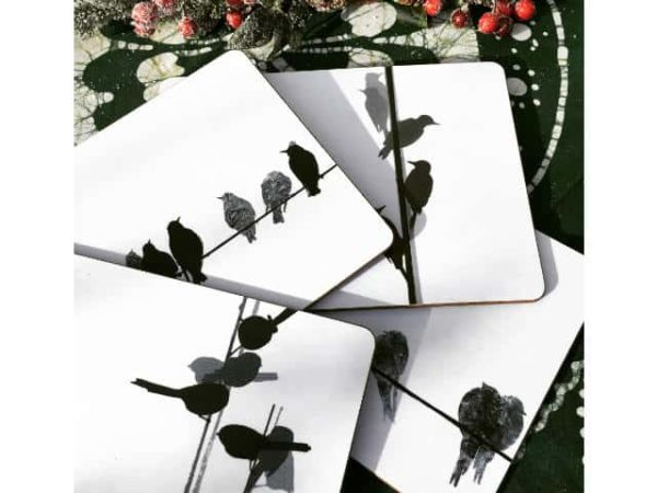 Sandra Vick Bird Placemats, Set of 4 Assorted