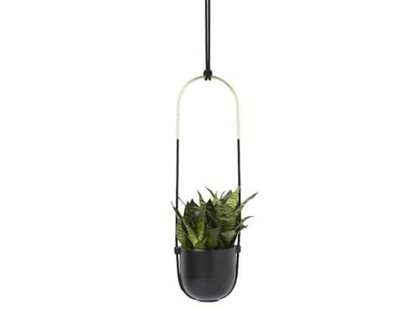 Umbra Bolo Brass Black Hanging Planter