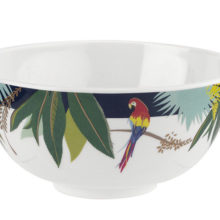 Sara Miller Parrot Melamine Bowl Set of 4 15cm Diameter